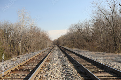 Railroad Railroad tracks amidst bare tree