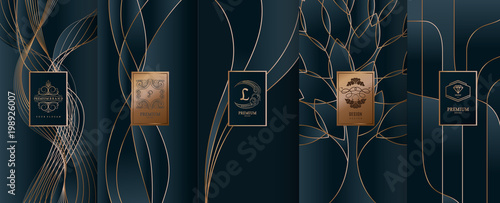 Fototapeta Collection of design elements,labels,icon,frames, for packaging,design of luxury products.for perfume,soap,wine, lotion.Made with golden foil.Isolated on line background.vector illustration obraz