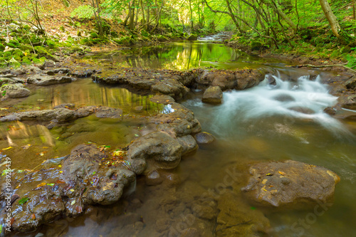 Foto auf Gartenposter Forest river Pristine river and waterfalls in the mountains, in autumn