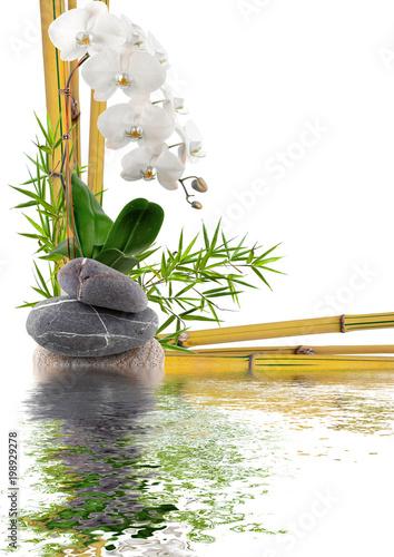bambou, orchidée et galets avec reflets Canvas-taulu