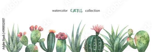 Foto Watercolor vector banner of cacti and succulent plants isolated on white background