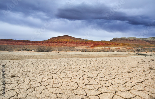 Fotomural Drought in the desert