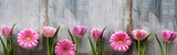 Fototapeta Tulipany - Spring flowers on shabby wood