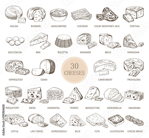 Fotografie, Obraz  Set of isolated sketches of cheese types