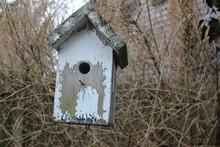 Old Wooden Birdhouse Hanging F...