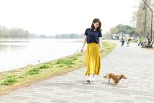 女性 ペット 散歩
