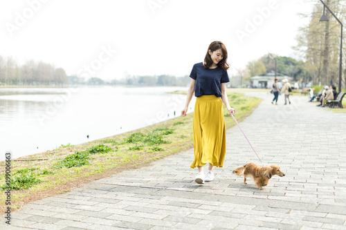 Obraz na płótnie 女性 ペット 散歩