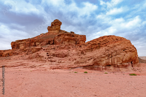 Foto op Aluminium Zalm The Spiral Hill sandstone geological attraction from Timna Park, Israel