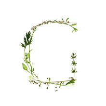 Floral Watercolor Letter G