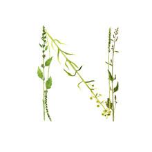 Floral Watercolor Letter N