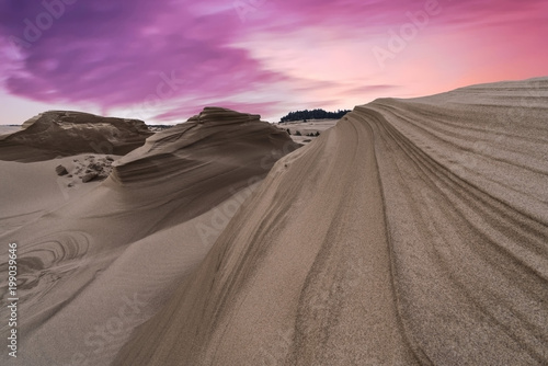 Tablou Canvas Oregon Dunes National Recreation Area, Oregon, USA