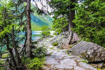 FototapetaMorskie Oko is the largest and fourth-deepest lake in the Tatra Mountains, Zakopane, Poland