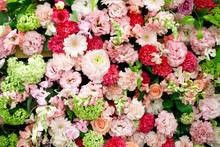 たくさんの花