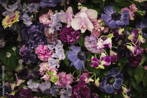 たくさんの花 Wallpaper Mural