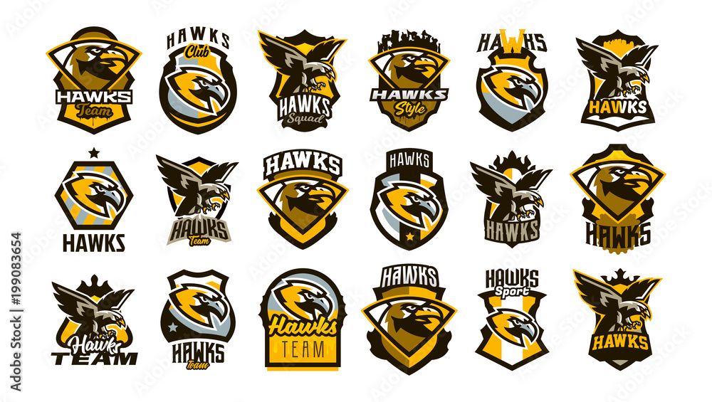 Fototapeta A large collection of colorful logos, badges, emblems on the theme of a hawk. Flying bird, hunter, predator, dangerous animal, shield, lettering. Mascot sports club, vector illustration