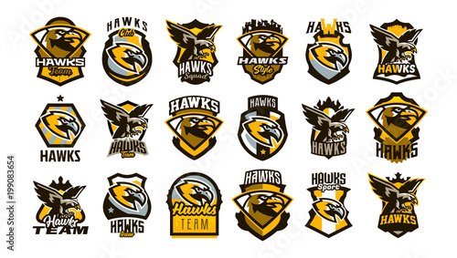 A large collection of colorful logos, badges, emblems on the theme of a hawk Canvas Print