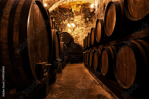 Wooden barrels with wine in a wine vault Canvas Print