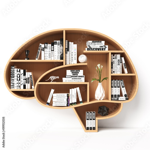 fototapeta na lodówkę Bookshelves in the shape of human brain, intelligence book shelf concept 3d rendering
