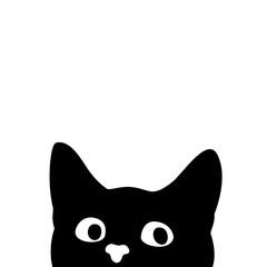 FototapetaCurious cat. Sticker on a car or a refrigerator