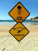 Two Warning Signs On A Beach In Magnetic Island, Tropical Queensland Warning Of Dangerous Marine Stingers And Bluebottle Jelly Fish
