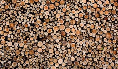 In de dag Brandhout textuur bonja 6