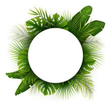 Tropical Green Leaves With Whi...
