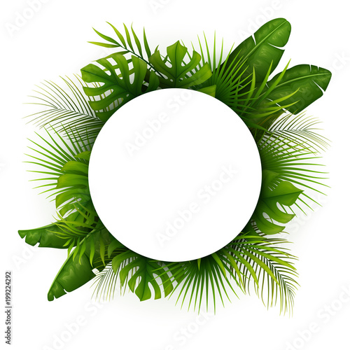 Tropical green leaves with white round frame place for text isolated on white background Fototapete
