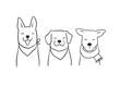 Vector illustration character design outline of cute dog