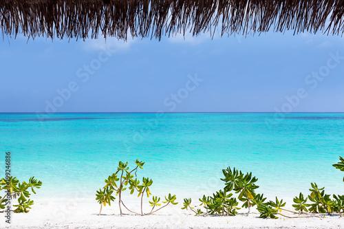 Maldivian island with beautiful nature