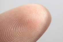 Close-up Of Fingerprint Texture Of Finger Skin