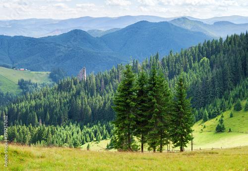 Lato panorama krajobraz lesiste góry.