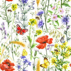 Fototapeta Łąka Wildflowers and Insects Pattern