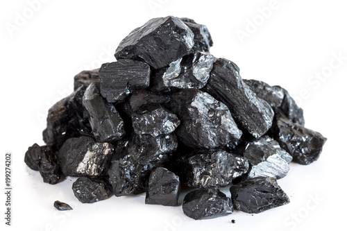 coal on a white background Canvas