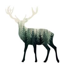 Vector Deer Silhouette With Mi...