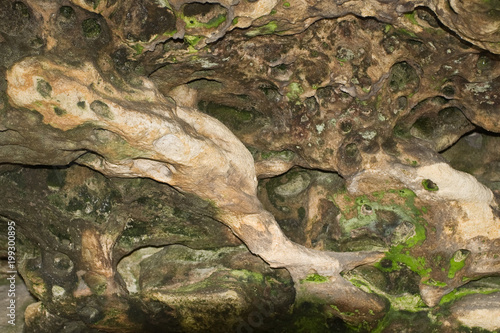 Fotografie, Obraz  Cave stone with green mold.