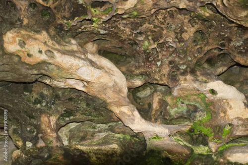 Valokuva  Cave stone with green mold.