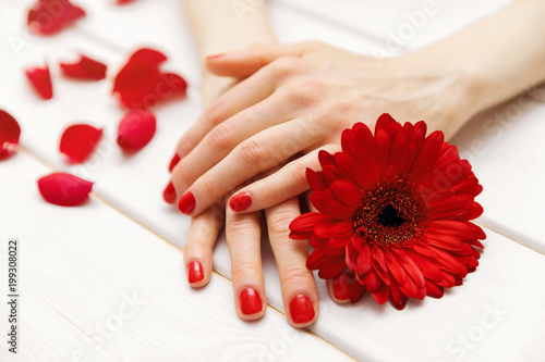 City on the water female hands with perfectly manicured red fingernails and flower petals