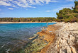 Premantura, Pula, Istria, Croatia: landscape of the bay of the adriatic sea