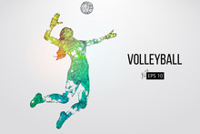 Silhouette Of Volleyball Playe...