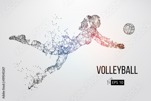 fototapeta na lodówkę Silhouette of volleyball player. Vector illustration.