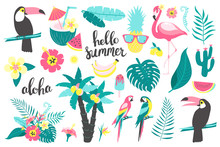 Summer Set Of Design Elements Tropical Leaves, Flowers, Fruits, Flamingos, Toucan, Parrot. Vector Illustration
