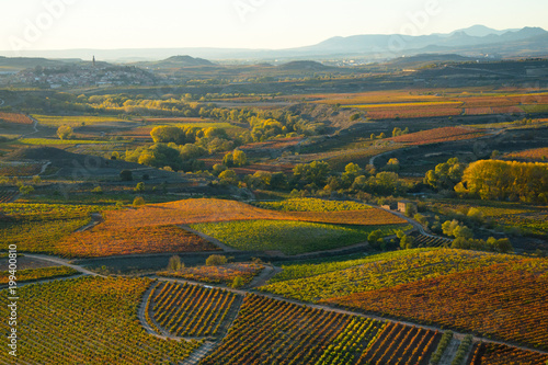 Autumnal fields in the Spanish wine-making region of La Rioja