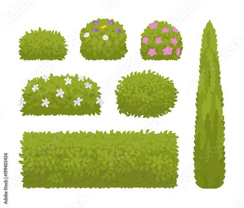 Green bushes set Canvas Print