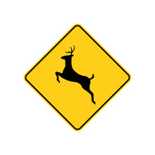 USA Traffic Road Sign. Deer Crossing Ahead. Vector Illustration