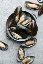 Raw Kiwi Mussels On Textured Light Colored Background