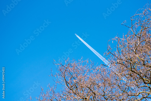 Photo  distant aircraft seen through bare trees