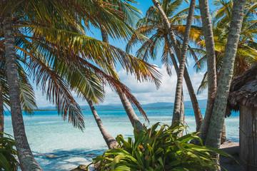 palmy chaty i ocean - tropikalny krajobraz wyspy -