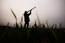 Silhouette Of Gun Shooting On A Pheasant Shoot