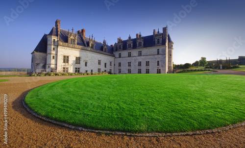 Deurstickers Kasteel beautiful Amboise castle in France