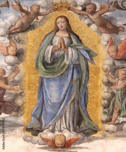 Madonna Assunta e angioletti; affresco di Bernardino Luini Canvas Print